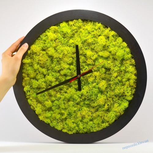 Часы настенные из стабилизированного мха VIVO 41см черные