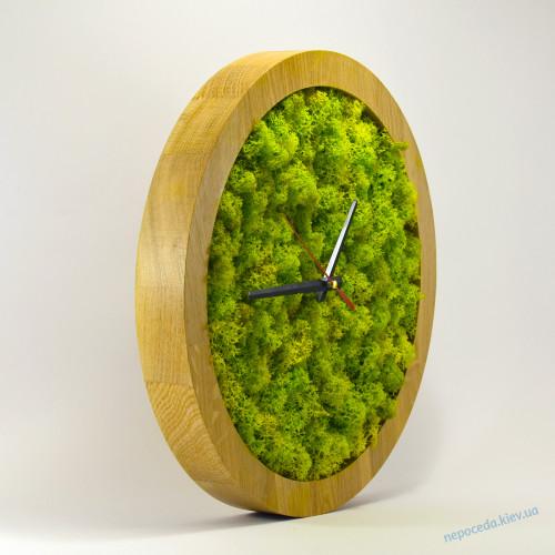 Часы настенные из стабилизированного мха VIVO 33см