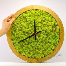 Часы настенные из стабилизированного мха VIVO 41см