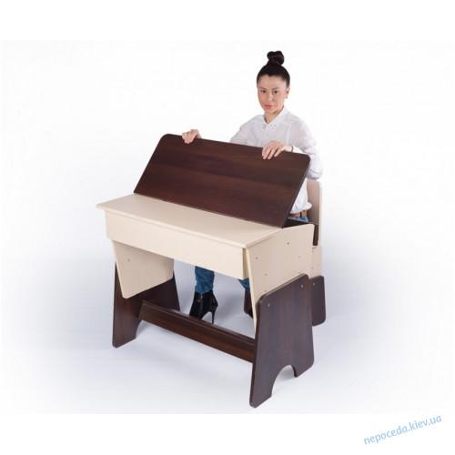 """Письменный стол и стул детский """"Соня"""" двухцветный"""