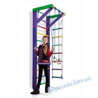 Детский cпортивный уголок «Карусель 2-240»