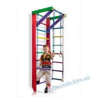 Детский cпортивный уголок «Барби 2-220» для девочки. Шведская стенка