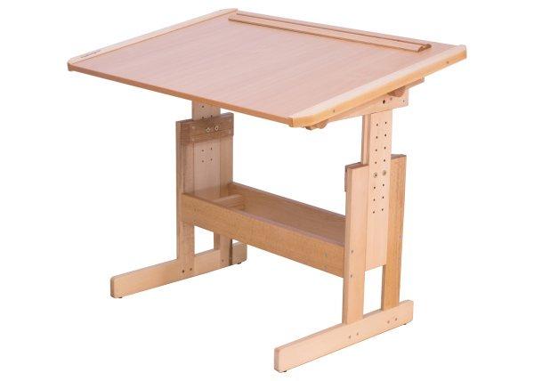 Розумник письменный стол для дома школьнику
